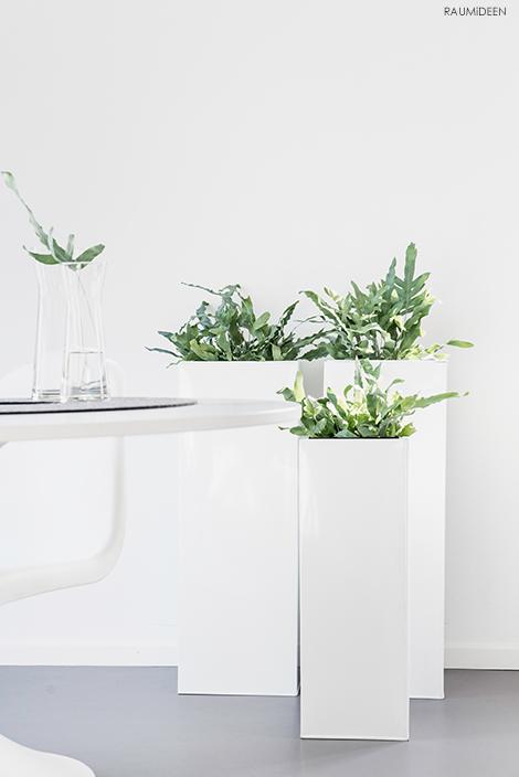 Mit Pflanzen wohnen, welche Pflanzkübel passen in meine Wohnung.