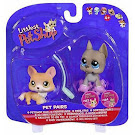 Littlest Pet Shop Pet Pairs Great Dane (#184) Pet