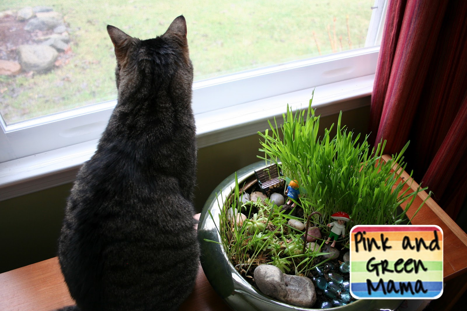 Indoor Cat Fairy Garden