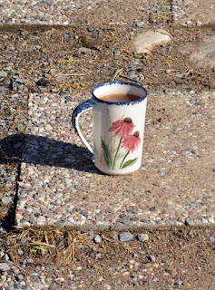 stone path with tea mug