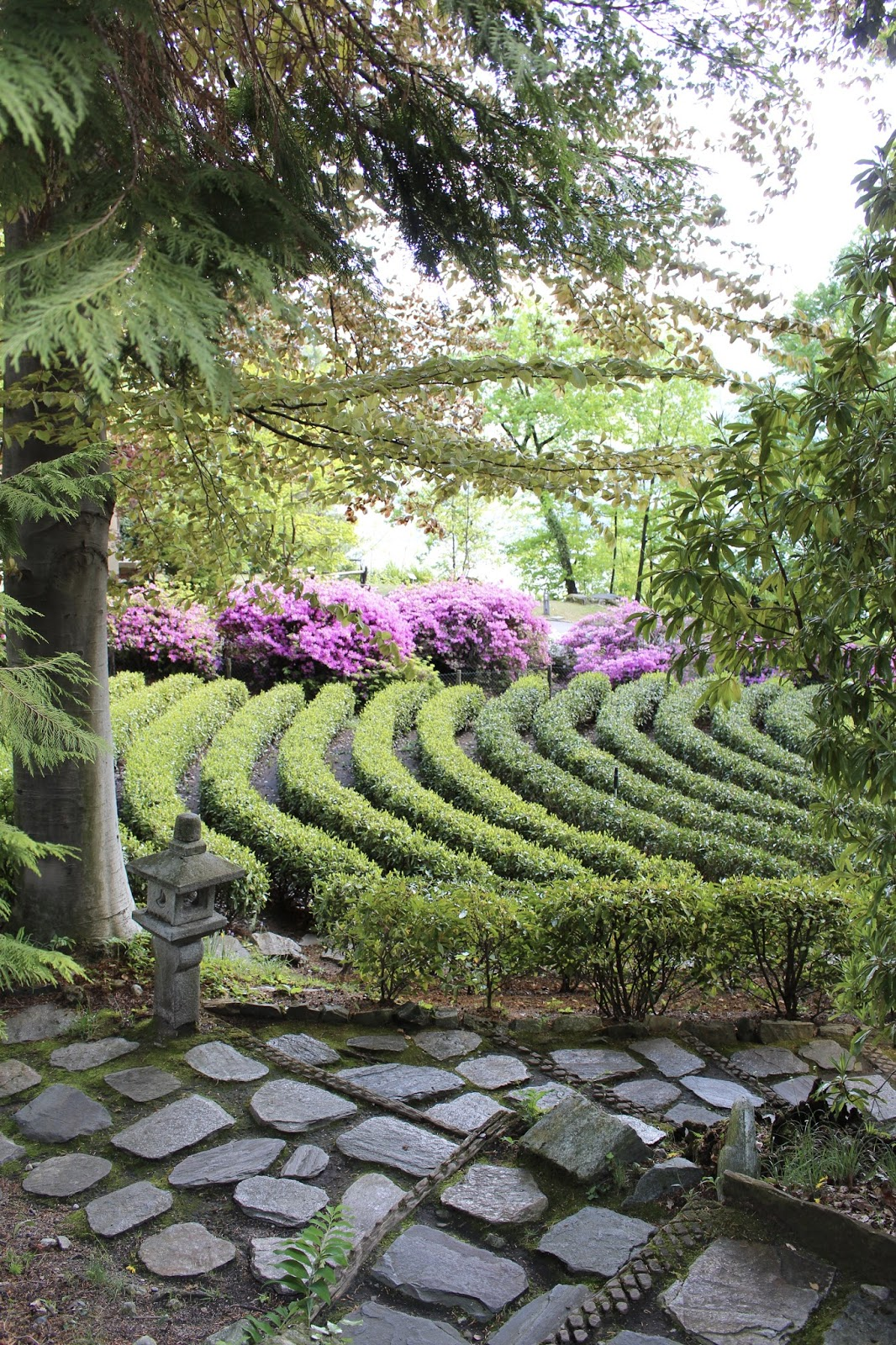 Teegarten auf dem Monte Verità, Ticino