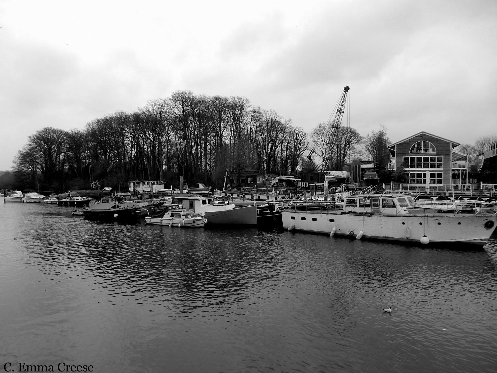 Richmond Twickenham Thames River