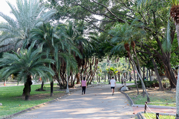 台中東區東峰公園(228紀念公園)兒童遊戲區、體訓場,綠意盎然休閒好去處