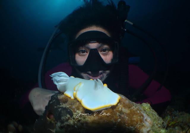 Scuba diving, Underwater Photography, Jun V Lao, Paparazsea