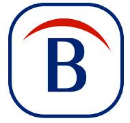 Download Belarc Advisor For Windows