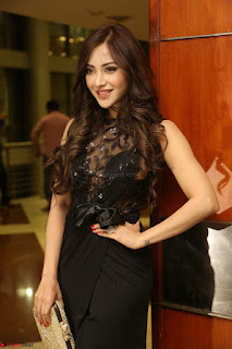 Angela Krislinzki in Transparent Black Gown at Rogue Movie Teaser Launch 1st March 2017 101.JPG