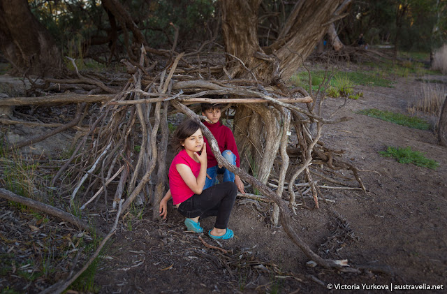 Children used branches to create a cozy hut among those roots