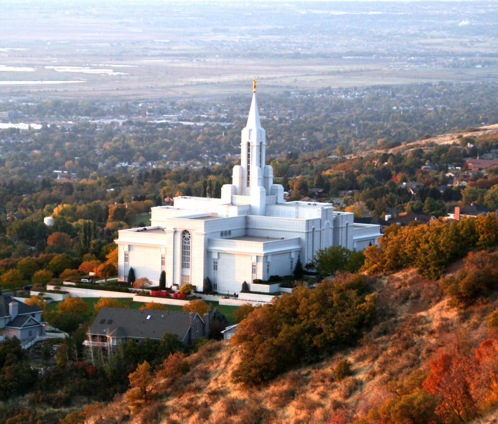 Steve's Bird'n Blog: A Mormon And A Naturalist