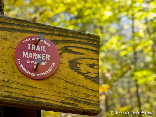 Peninsula Trails - Lake Placid, por El Guisante Verde Project