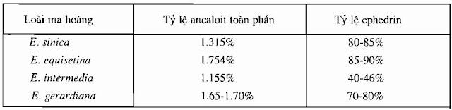 Tỷ lệ thành phần HH Ma Hoàng - Ephedra sinica; Ephedra equisetina; Ephedra intermedia - Nguyên liệu làm thuốc Chữa Cảm Sốt