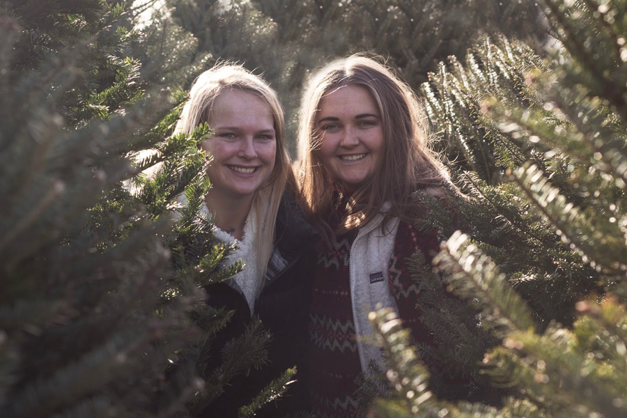 Tree Farm, Christmas Trees, Holiday Season Activities, 12 Things, College Blogger, Lifestyle Blogger