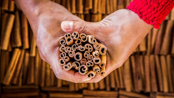 Do You Know Where Cinnamon Comes From? After Watching This Video, You Will Never See It The Same Way Again!
