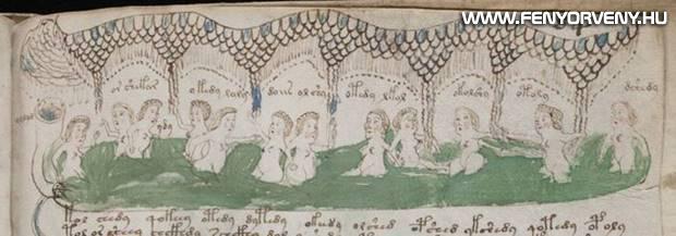 voynich kezirat 03 - A középkor legtitokzatosabb irománya, a Voynich-kézirat