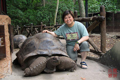 Giant Aldabra Tortoise: Animals That Never Die