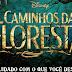 [FILME] Caminhos da Floresta, 2014