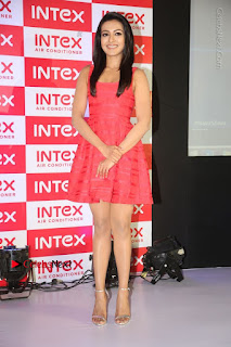 Actress Catherine Tresa Unveils Intex Air Conditioners  0238.jpg