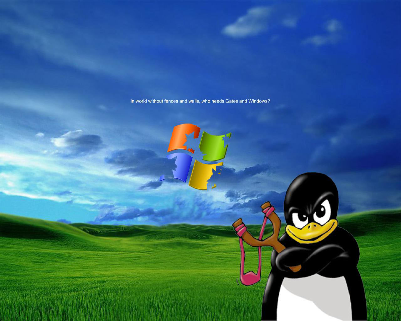 Fondo De Pantalla De Xp En Hd: HD Animal Wallpapers: Free Desktop Backgrounds