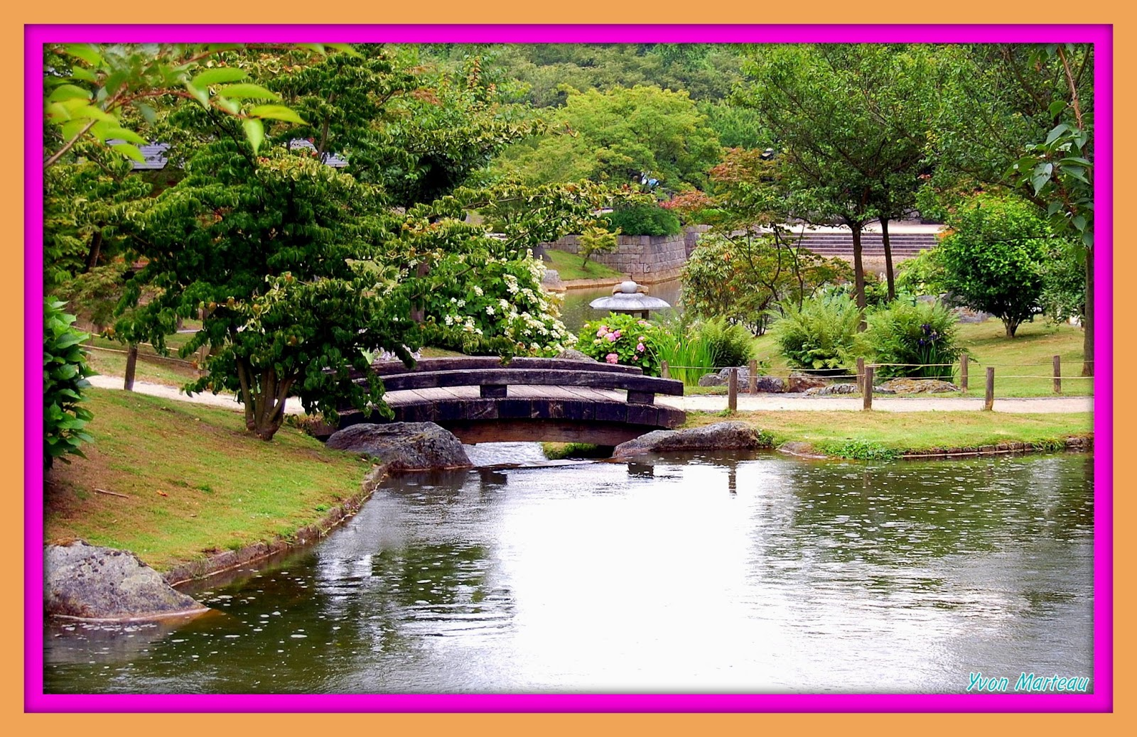 Yvon Photographie Hasselt Jardin Japonais