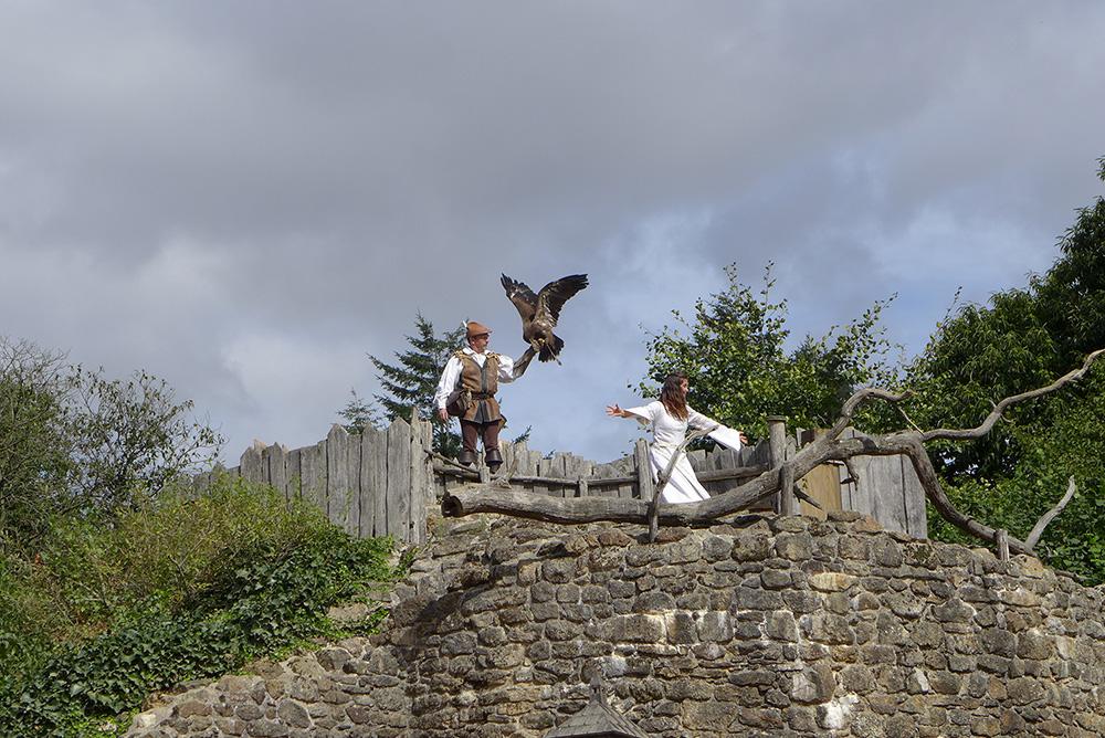 le fauconnier au bal des oiseaux du puy du fou