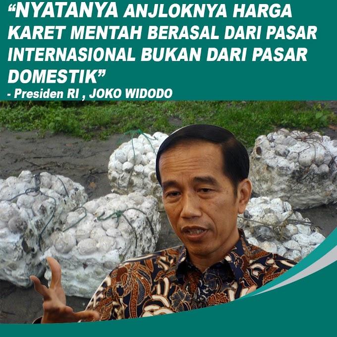 Jokowi Janji Beli Karet Petani dengan Harga Lebih Tinggi