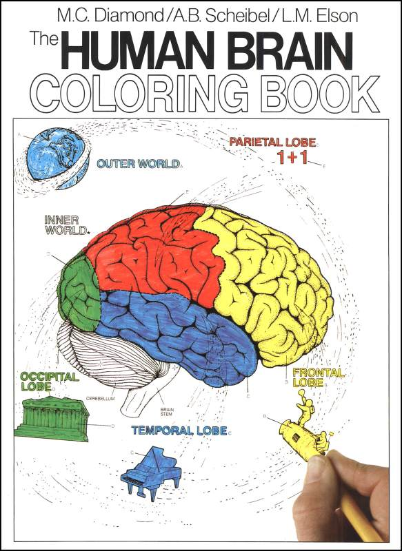 It is an image of Fabulous brain coloring pages