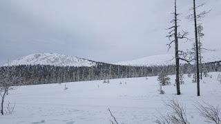 Pallas-Yllästuntunturin kansallispuisto Ylläs