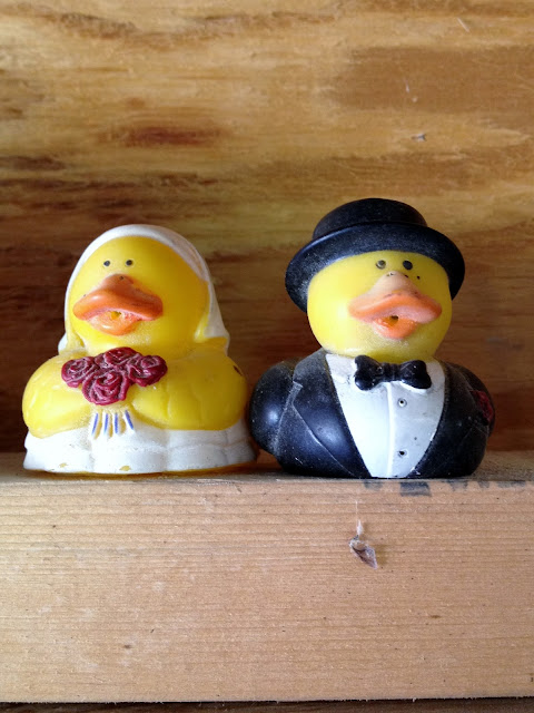 bride groom duck favors