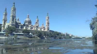 Ebro algas Zaragoza El Pilar