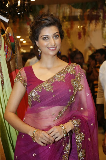 Actresss Hamsanandini in Transparent Saree Photos