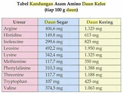 Kandungan asam amino pada daun kelor