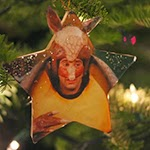 Holiday Armadillo <br />Ornament
