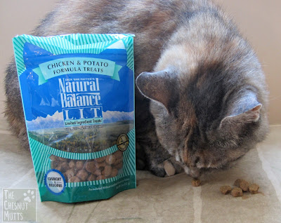 Smooshie trying out some Natural Balance L.I.T Cat Treats