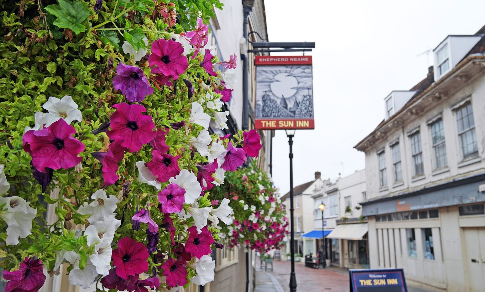 Flowers outside The Sun Inn in Faversham, Kent