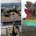 Criminosos do Pateo do Collegio também foram responsáveis pelos ataques ao Monumento das Bandeiras e estátua de Borba Gato