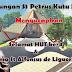 Selamat HUT ke-4 Paroki St Alfonsus Nandan - Lingkungan Petrus Kutu Patran
