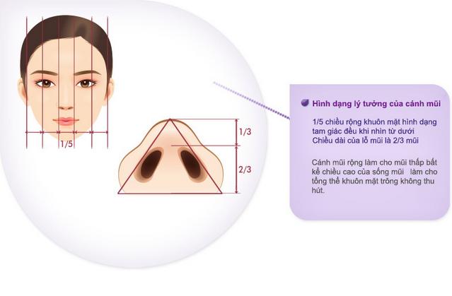 thẩm mỹ dáng mũi