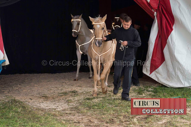 sortie de piste de d eux chevaux