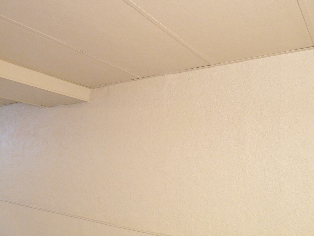 Painted Drop Ceiling