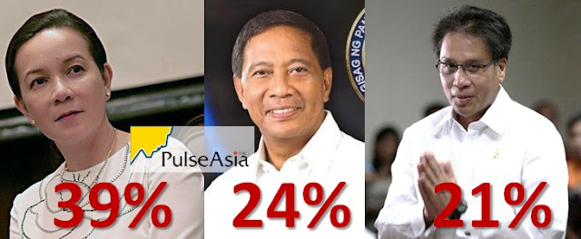 Sen. Grace Poe leads the latest survey from Pulse Asia.