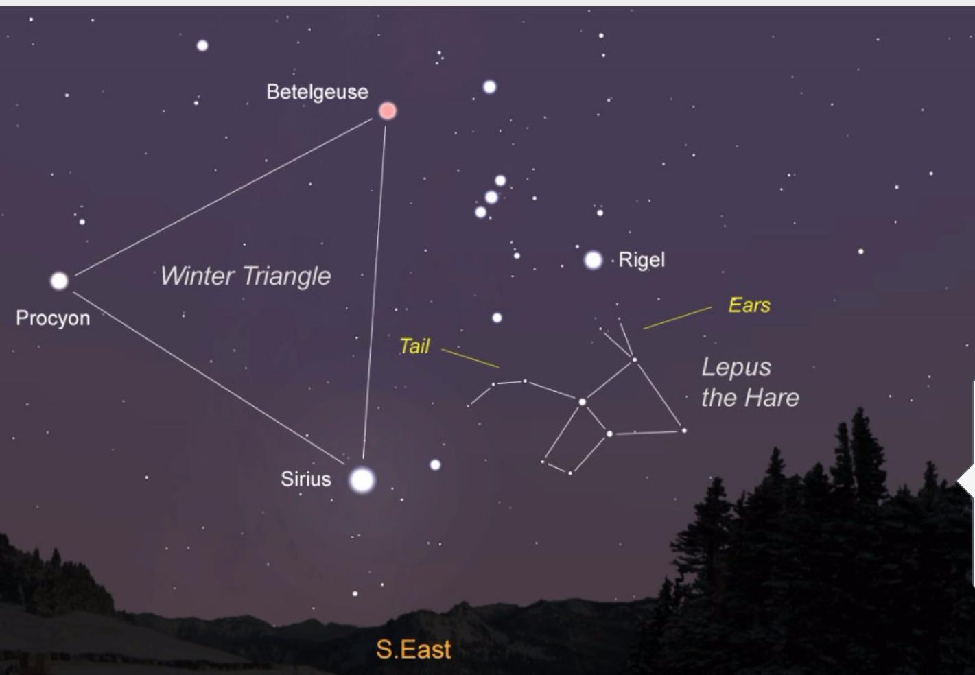 Sirius Tähti