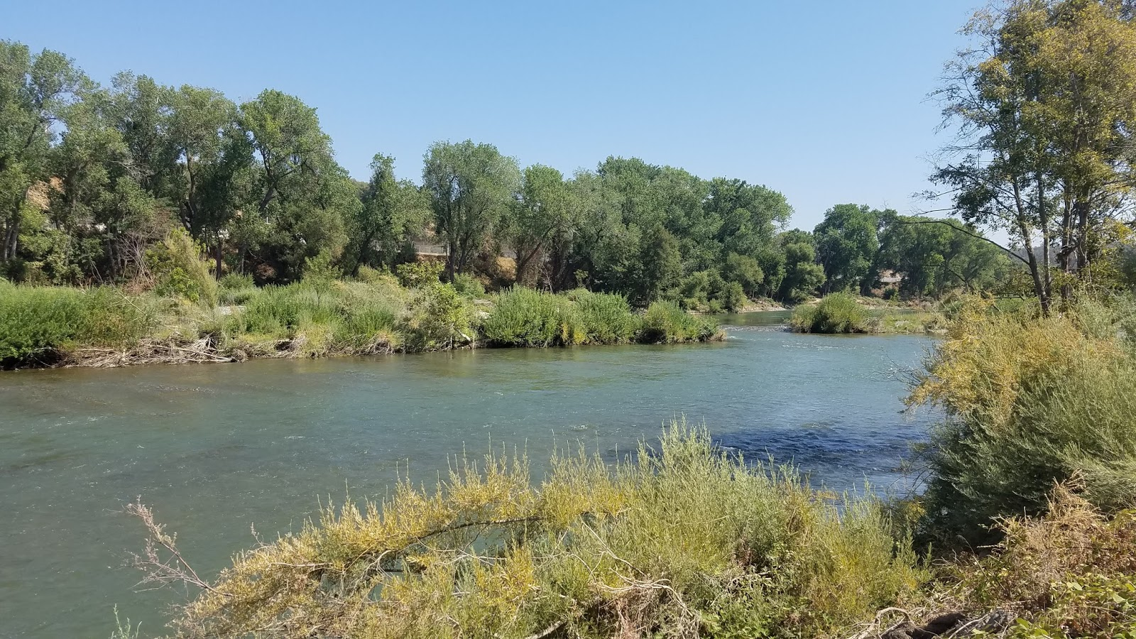 Keep calm and fly fish how do i fish this lower feather for Feather river salmon fishing