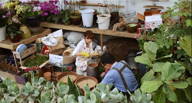 Hong-chae saat bekerja di toko bunga