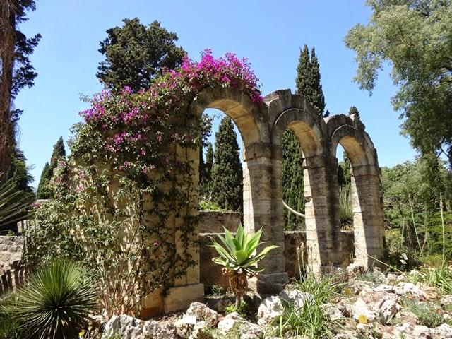 Jacques huber and the amazonian botany jardin des plantes - Le jardin des plantes montpellier ...