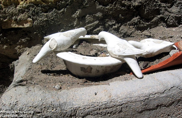 palomas-castielfabib-valencia