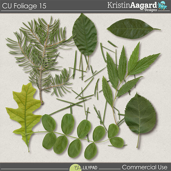 http://the-lilypad.com/store/Digital-Scrapbook-Design-Tools-CU-Foliage-15.html