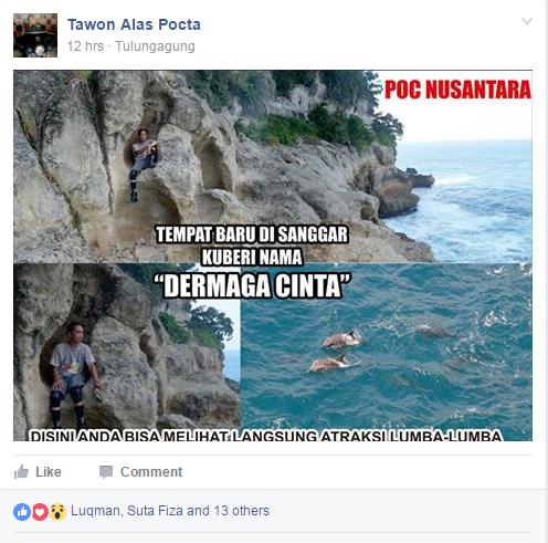 lokasi lumba-lumba pantai sanggar