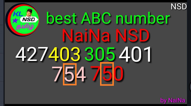 Karunya plus KN-220 Raja Naina abc guessing best numbers kerala lottery result on 05-07-2018