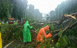 fani-storm-65-teams-of-ndrf-deployed