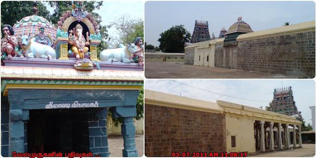 Thevara Padal Petra Shiva Temples nc05