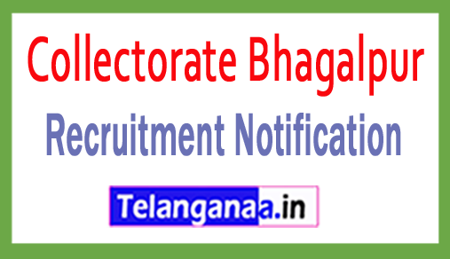 Collectorate Bhagalpur Recruitment